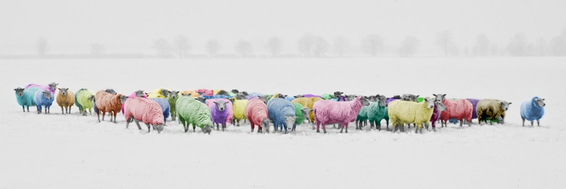 landscape-nature-snow-winter-white-panoramic-599912-pxhere.com