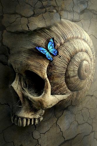 chairoscuro fantasy 500 Image by Stefan Keller