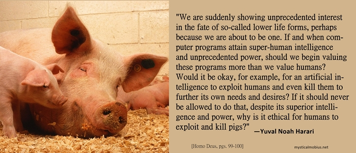 Harari pigs meme