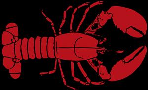 lobster 300