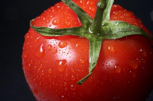 Tomato - Photo by Immo Wegmann CC0